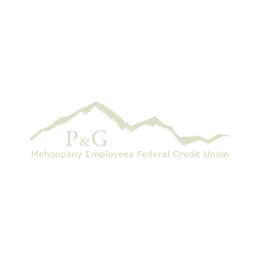 Patrick Holmes CEO of P & G Mehoopany Employees FCU